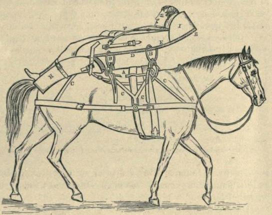 A Manual for the Transport of Sick and Wounded by Pack Animals
