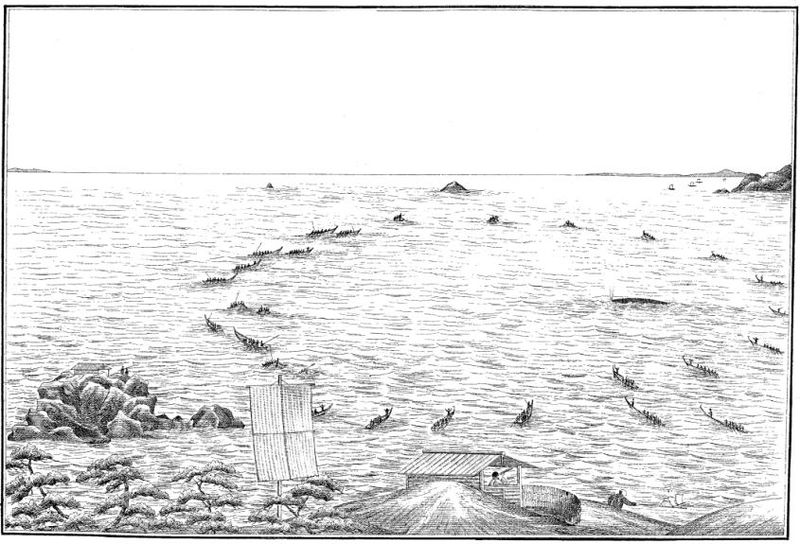 low-tech whale hunting in japan