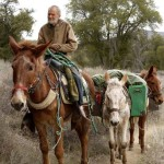 Our Right to be Outside: Three Mules