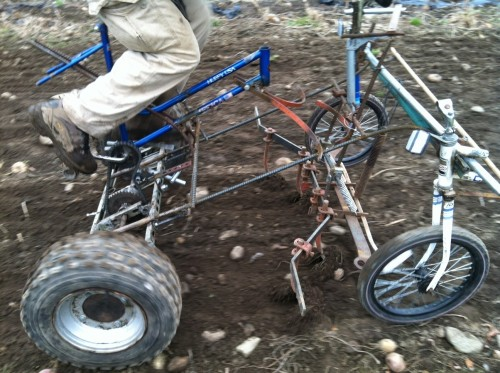 the culticycle