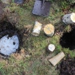 Bog Butter: Storing Food in Soil